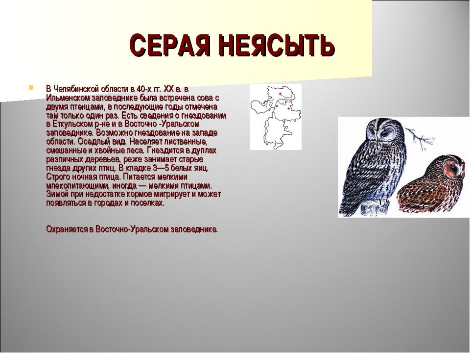 СЕРАЯ НЕЯСЫТЬ В Челябинской области в 40-х гг. XX в. в Ильменском заповеднике...