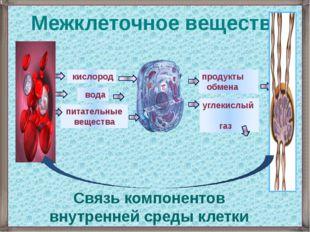 кислород вода питательные вещества углекислый газ продукты обмена Межклеточн