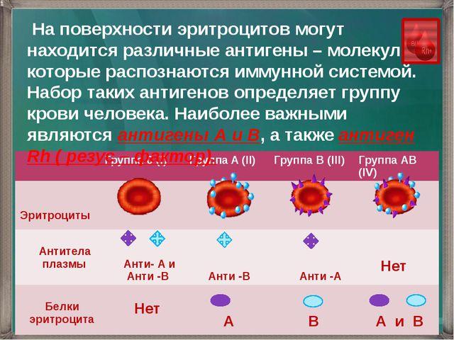 На поверхности эритроцитов могут находится различные антигены – молекулы кот...