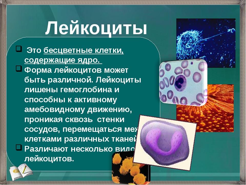 Это бесцветные клетки, содержащие ядро. Форма лейкоцитов может быть различно...