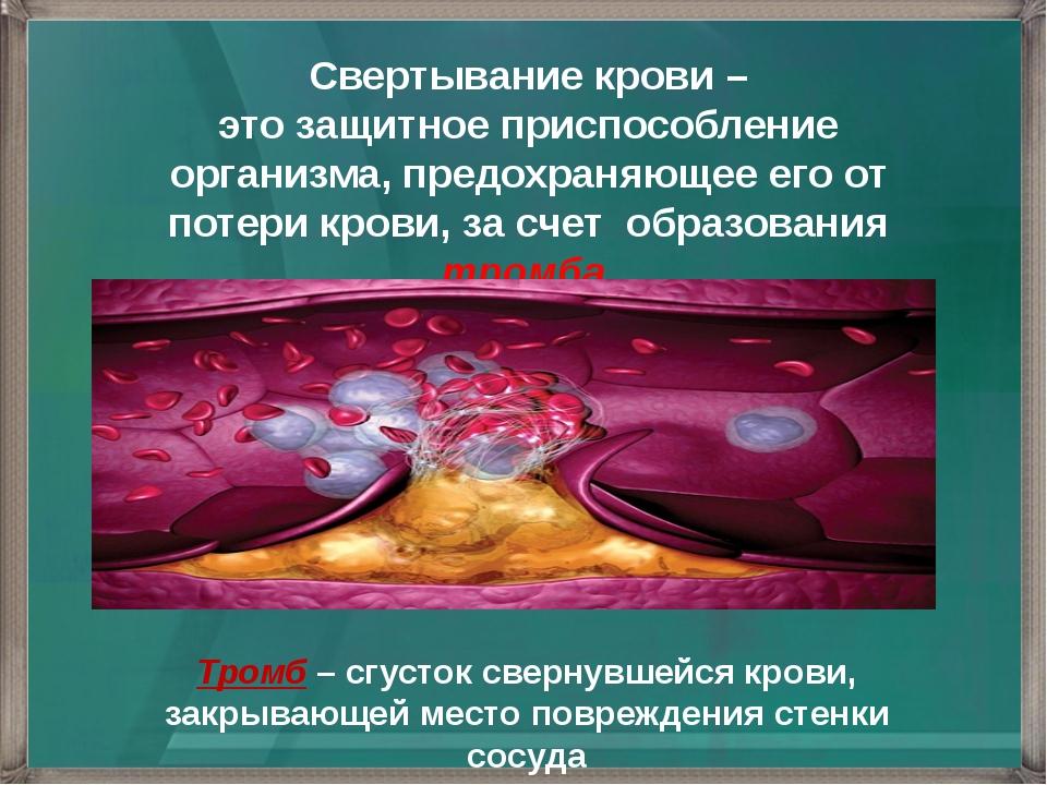 Свертывание крови – это защитное приспособление организма, предохраняющее его...
