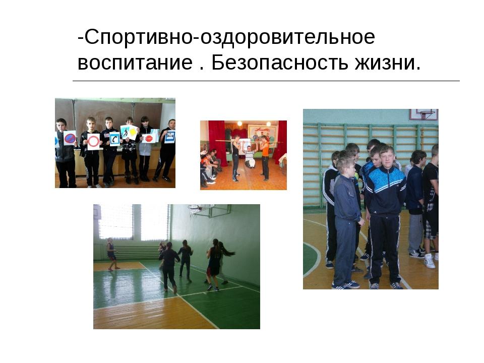 -Спортивно-оздоровительное воспитание . Безопасность жизни.