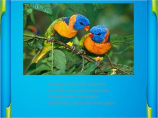 Говорил попугай попугаю:                  «Я тебя, попугай, попугаю».