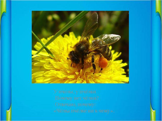 У пчелы, у пчёлки                 Почему нет чёлки?...