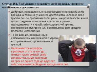 Статья 282. Возбуждение ненависти либо вражды, унижение человеческого достоин