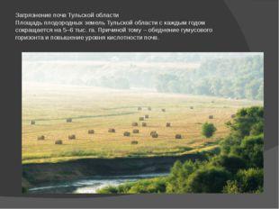 Загрязнение почв Тульской области Площадь плодородных земель Тульской области