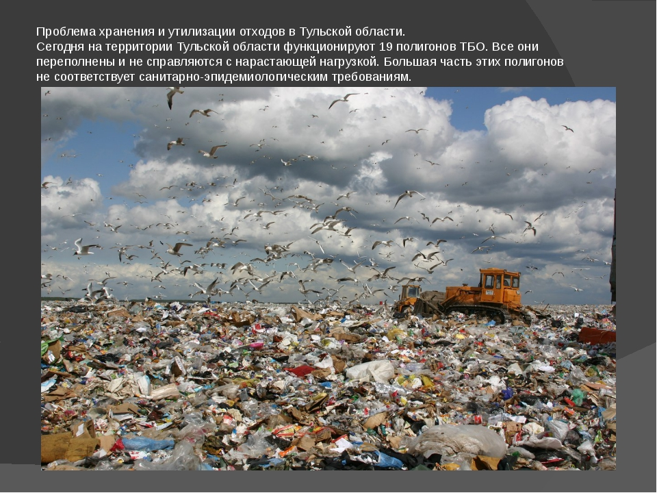 Проблема хранения и утилизации отходов в Тульской области. Сегодня на террито...