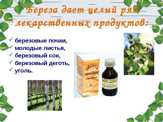 березовые почки, молодые листья, березовый сок, березовый деготь, уголь. Бер...
