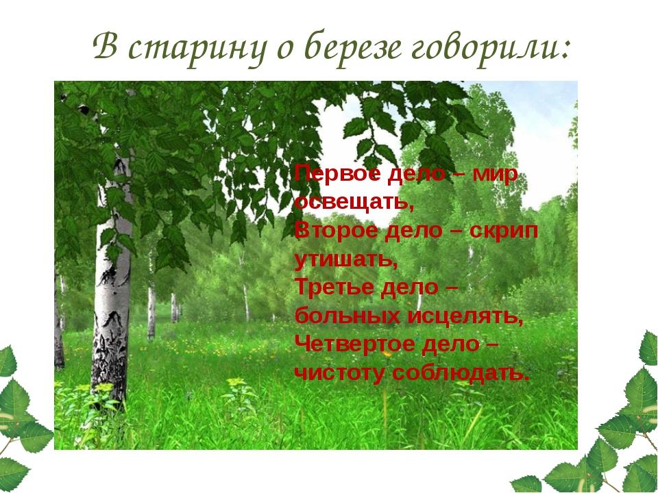 В старину о березе говорили: Первое дело – мир освещать, Второе дело – скрип...