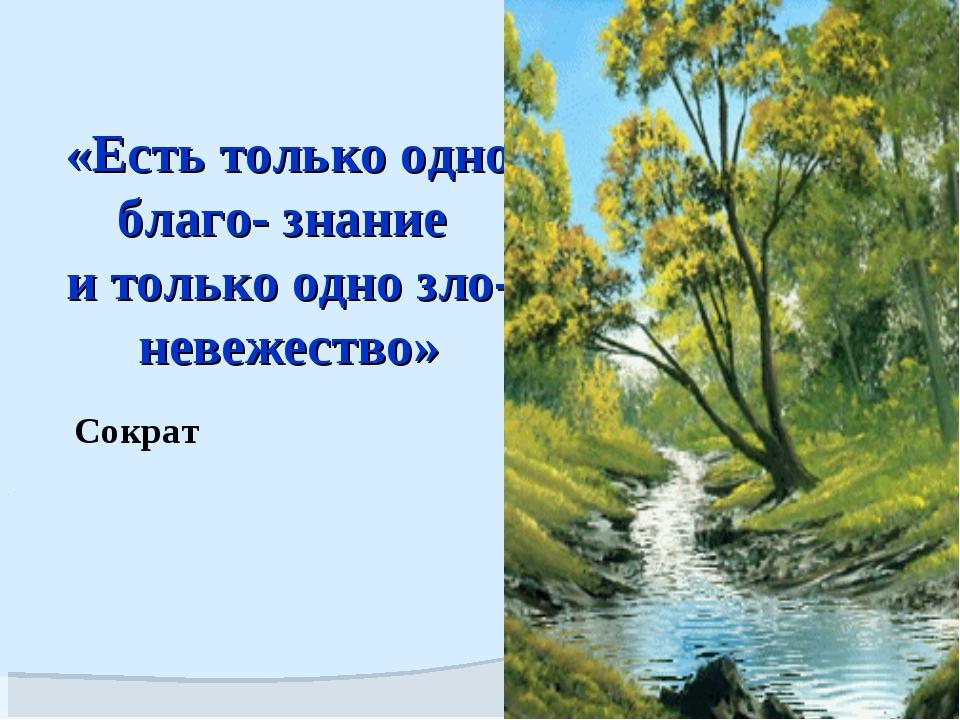 «Есть только одно благо- знание и только одно зло-невежество» Сократ