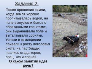 Задание 2. После орошения земли, когда земля хорошо пропитывалась водой, на п