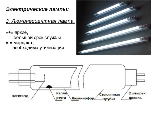 Электрические лампы: 3. Люминесцентная лампа. «+» яркие,  большой срок служб...