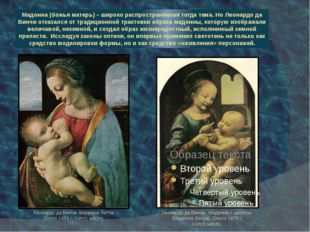 Мадонна (божья матерь) – широко распространённая тогда тема. Но Леонардо да В