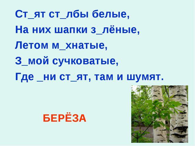 Ст_ят ст_лбы белые, На них шапки з_лёные, Летом м_хнатые, З_мой сучковатые, Г...