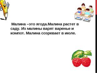 Малина –это ягода.Малина растет в саду. Из малины варят варенье и компот. Ма
