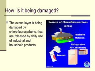 How is it being damaged? The ozone layer is being damaged by chlorofluorocarb