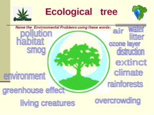 Ecological tree Name the Environmental Problems using these words: