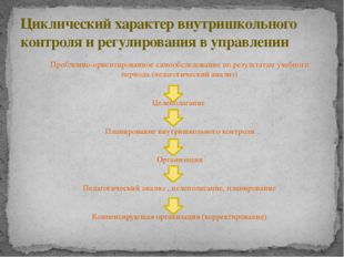 Проблемно-ориентированное самообследование по результатам учебного периода (п