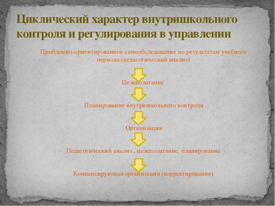 Проблемно-ориентированное самообследование по результатам учебного периода (п...