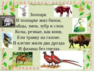 Выучить стихотворение Зоопарк В зоопарке жил бизон, Зайцы, змеи, зубр и слон.