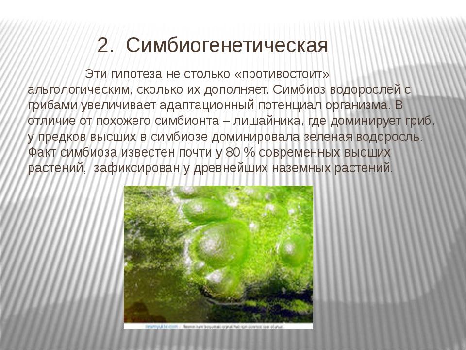 Гипотезы происхождения высших растений Симбиогенетическая Эти гипотеза не столько противостоит альгологическим