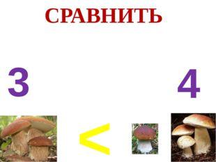 < 3 4 СРАВНИТЬ