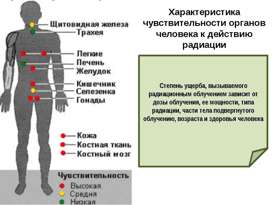 Характеристика чувствительности органов человека к действию радиации Степень...