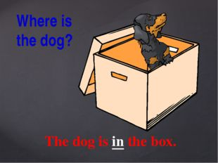 The dog is in the box. Where is the dog?