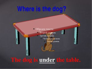 Where is the dog? The dog is under the table.