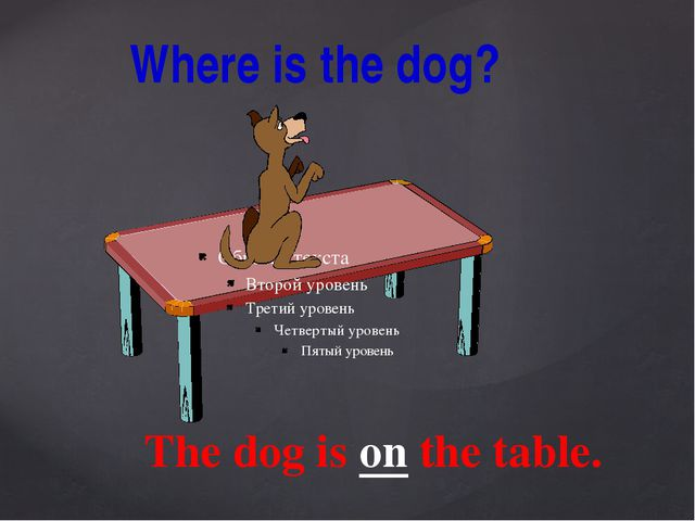 Where is the dog? The dog is on the table.