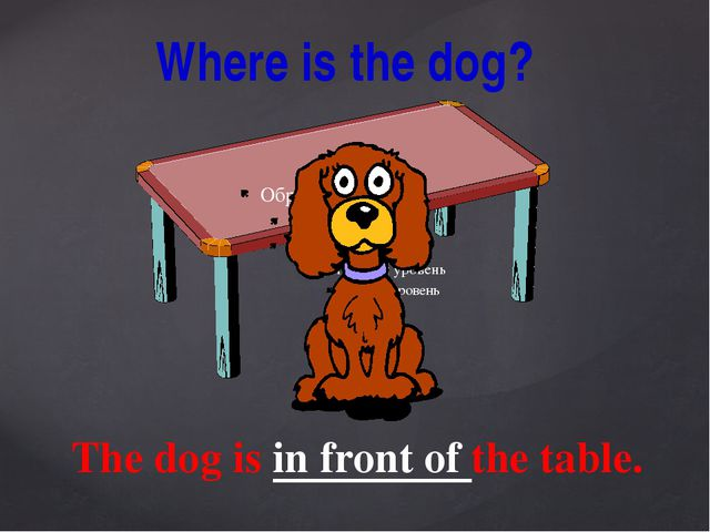 Where is the dog? The dog is in front of the table.
