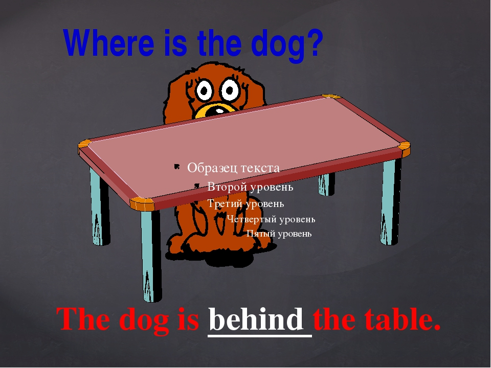 The dog is behind the table. Where is the dog?