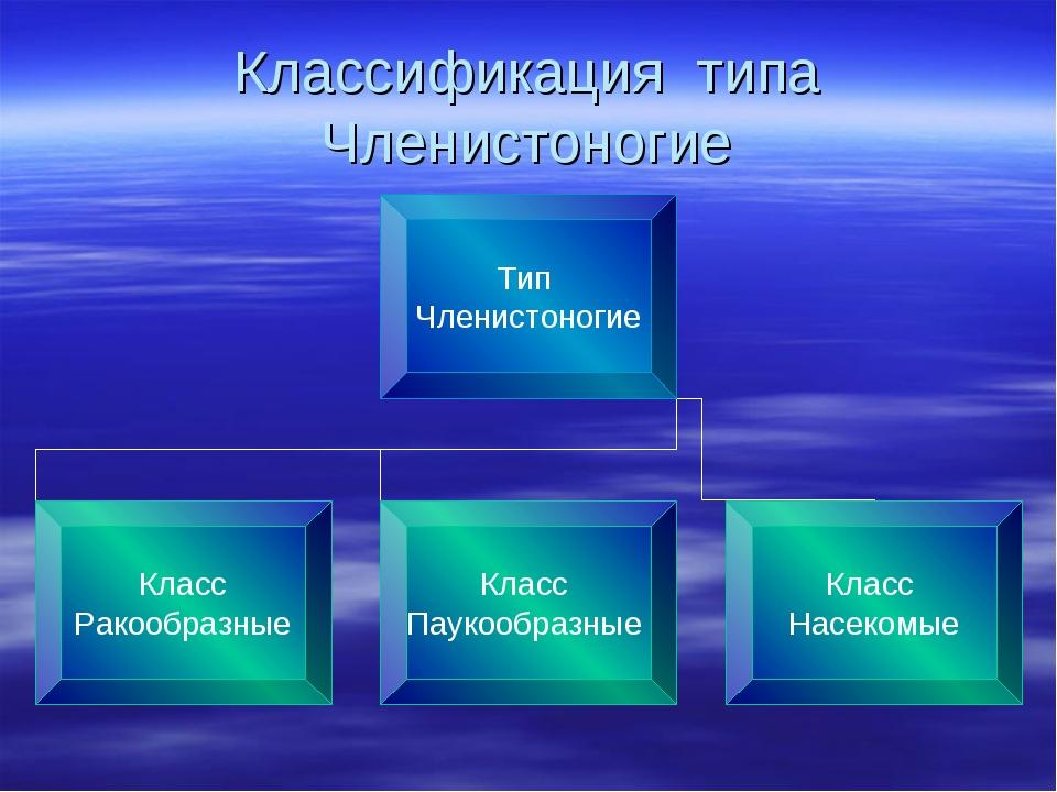 Классификация типа Членистоногие