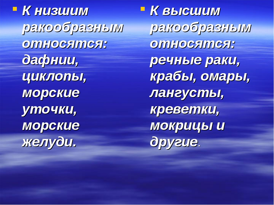 К низшим ракообразным относятся: дафнии, циклопы, морские уточки, морские жел...