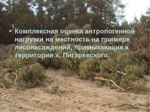 Комплексная оценка антропогенной нагрузки на местность на примере лесонасажде