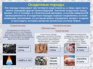 каменный уголь нефть и газ песок и глина гравий, галька, валуны Каменная соль