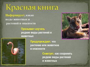 Информирует, какие виды животных и растений в опасности Призывает изучать ред
