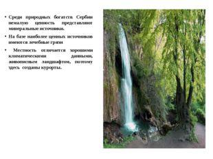 Среди природных богатств Сербии немалую ценность представляют минеральные ист