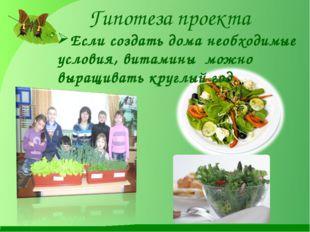 Гипотеза проекта Если создать дома необходимые условия, витамины можно выращи
