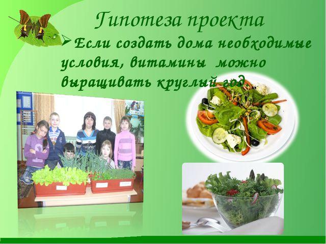 Гипотеза проекта Если создать дома необходимые условия, витамины можно выращи...