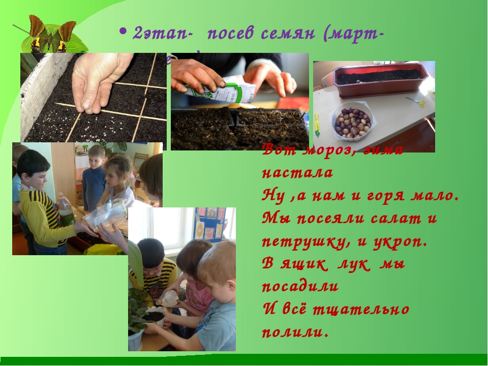 2этап- посев семян (март-апрель) Вот мороз, зима настала Ну ,а нам и горя мал...