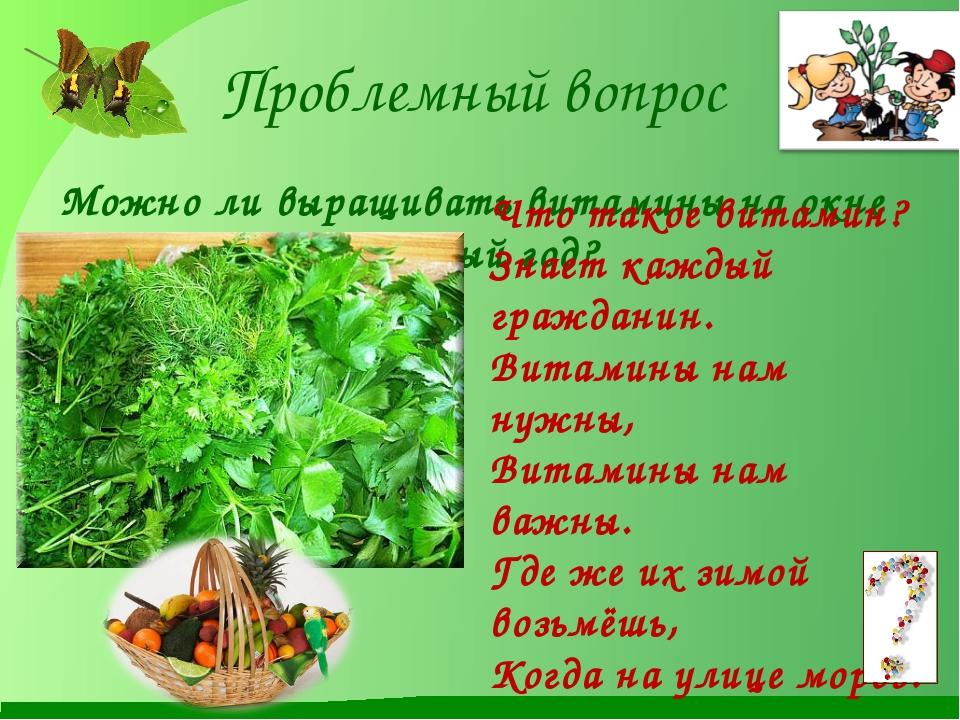 Проблемный вопрос Можно ли выращивать витамины на окне круглый год? Что такое...