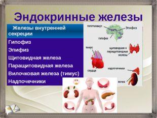 Эндокринные железы Железы внутренней секреции Гипофиз Эпифиз Щитовидная желез