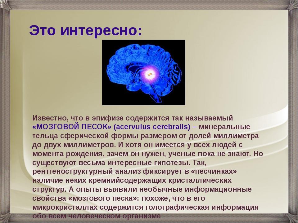 Это интересно: Известно, что в эпифизе содержится так называемый «МОЗГОВОЙ ПЕ...