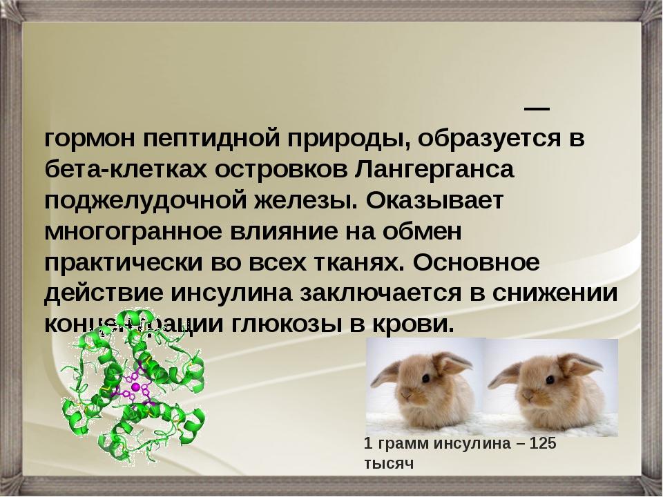 Инсули́н (от лат. insula — остров) — гормон пептидной природы, образуется в б...