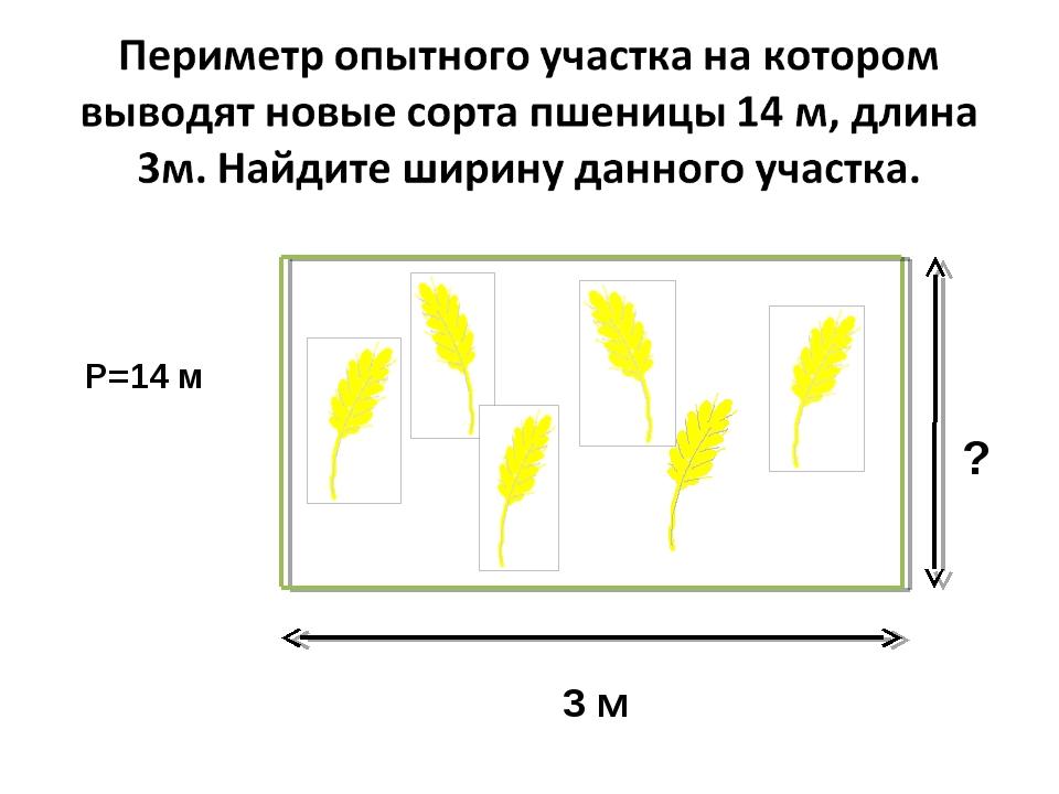 3 м ? Р=14 м