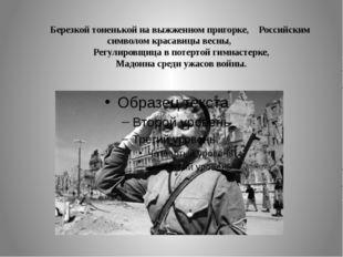 Березкой тоненькой на выжженном пригорке, Российским символом красавицы весн