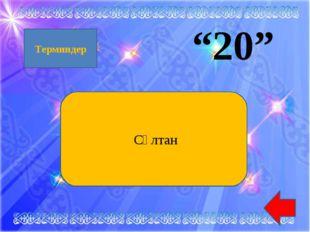 """""""20"""" Сұлтан Терминдер"""
