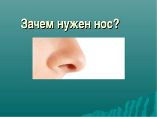 Зачем нужен нос?