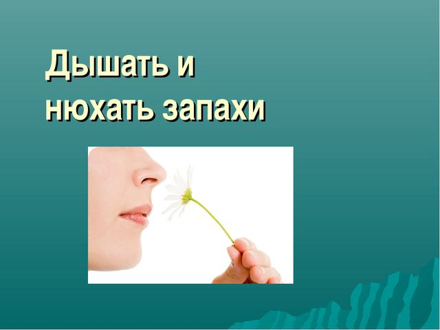 Дышать и нюхать запахи